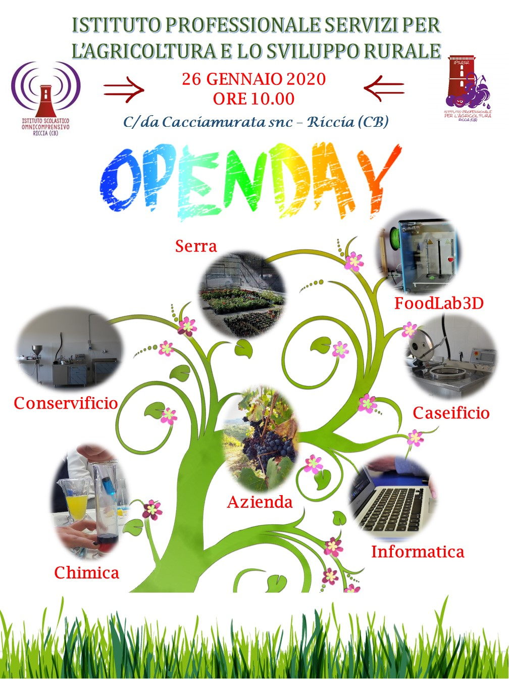 Open Day IPSASR